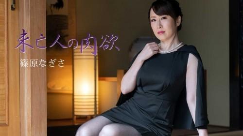 HEYZO 2511 未亡人の肉欲Vol.3 篠原なぎさ