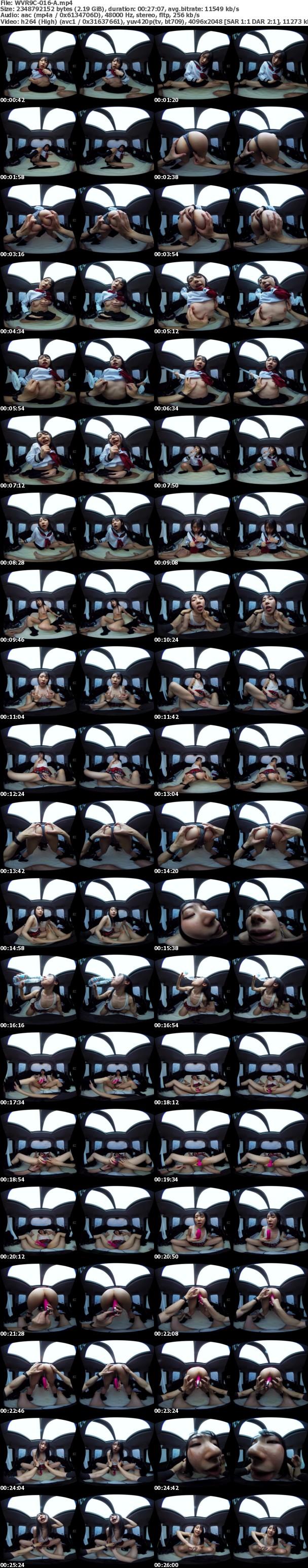 (VR) WVR9C-016 悶々とする車内でずぶ濡れになって肉食系カーセックスヤリまくりました 皆月ひかる